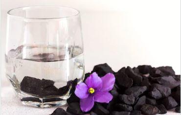 shungitewater